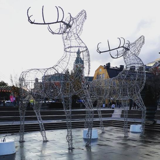 Le renne di Kungsträdgården